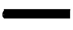 Goran Sarić net Logo